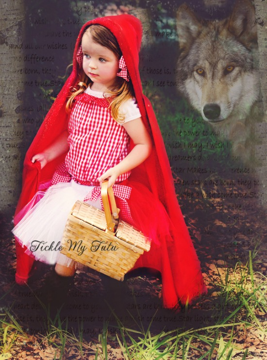 Little Red Riding Hood Inspired Tutu Costume