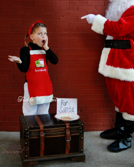 Cookies with Milk For Santa Apron